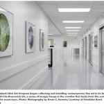 Emergency Room Design – Reducing Visual Overload