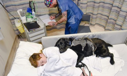 Therapy Dogs Comforts 9-Year-Old Boy With Autism